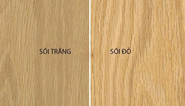 Gỗ sồi trắng và gỗ sồi đỏ